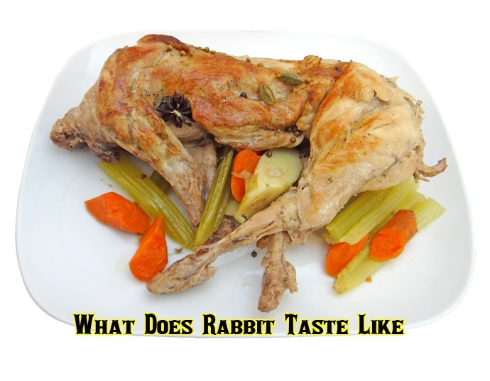 What Does Rabbit Taste Like